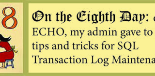 12 Days of ECHO, Eighth Day: My Admin Gave to Me, Tips on Epicor SQL Transaction Log Maintenance!