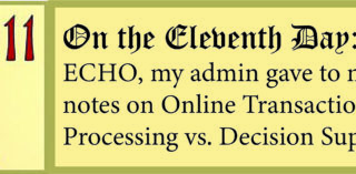12 Days of ECHO, Eleventh Day: My Admin Gave to Me, notes on Online Transaction Processing vs. Decision Support!
