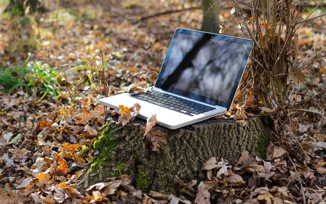5 Ways to Secure Remote Workers & Keep Your Data Safe